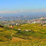 Convegno: Quale futuro per i giovani produttori di Moscato